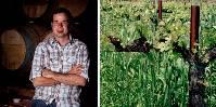 «J'espère que cette étude aidera le bio et la biodynamie. Nous croyons que la viticulture bio contribue à une meilleure qualité, des sols et des vins» témoigne le vigneron bio Aron Weinkauf.