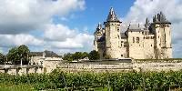 Le vignoble d'Anjou-Saumur devrait mieux s'en sortir. Le gel a été plus hétérogène. Pour ne pas léser ni les vignerons qui ont du volume dans leurs vignes, ni les marchés des AOC, les appellations de rosés et de bulles ont obtenu des dépassements individuels des rendements de base entre 3 et 5 hl/ha.