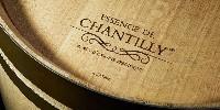La tonnellerie a choisi la forêt de Chantilly après étude et analyse des sols