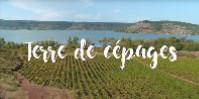Diffusé le 9 septembre, le premier épisode revient sur la diversité des terroirs et de leurs influences sur la typicité des raisins, et des vins.