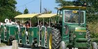 The Domaine de la Grave little train favourite wine tourism pick for 2018