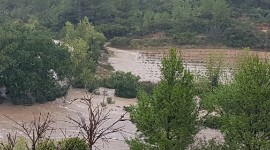 At Domaine Cases, the bridge leading to the flooded vineyards collapsed. Henri Cases cannot access his vines.
