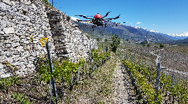 850 hectares could be treated by UAV in the northern Côtes du Rhône, Beaujolais and Savoy regions. The technique is also attracting interest in Alsace.