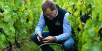 Cyril Brun, chef de caves de Charles Heidsieck, estime que les chardonnays présentent un beau potentiel de garde.