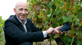 """The phasing out of CMRs has shown us that many things are possible in Bordeaux"", says Philippe Degrendel."