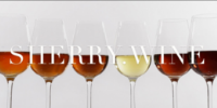 From sherry.org to sherry.wine – Spain's oldest DO innovates on the web
