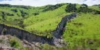 Si des dégâts impressionnants sont constatées dans l'archipel néo-zélandais, les vignobles ont été globalement épargnés