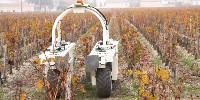 Développé pour les vignes larges du Sud-Ouest, l'enjambeur électrique TED a été testé ce début novembre dans les vignes étroites du château Clerc Milon (cru classé de Pauillac).