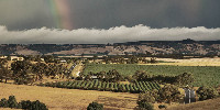 Avec son vignoble attractif, l'Australie méridionale se transforme progressivement en pied-à-terre du business chinois.