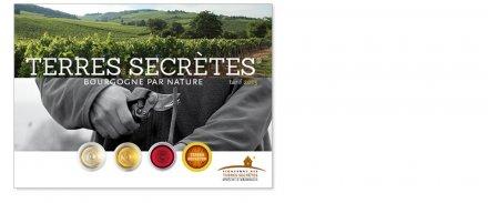 Bourgogne : marge en augmentation de 8% pour les Vignerons des Terres secrètes