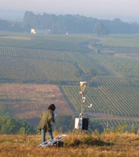 Recherche viticole en Anjou : d'autant plus fondamentale qu'elle est en danger