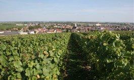 Deux certifications environnementales décrochées pour la maison de Champagne Duval-Leroy