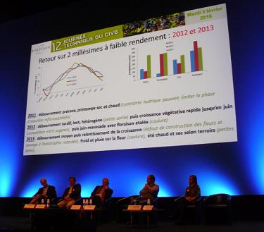 A retenir de la journée technique des vins de Bordeaux : l'innovation variétale se régionalise