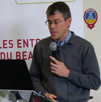 Viticulture bio en Beaujolais : des rendements en baisse de 45 % par rapport au conventionnel