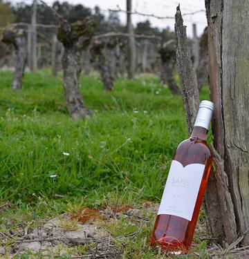 Vins sans sulfites : Buzet complète sa gamme avec un rosé, plus foncé mais pas plus cher