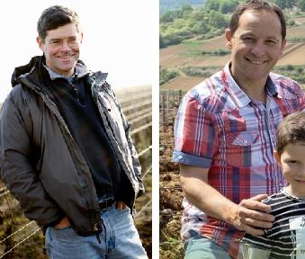 Bourgogne : fusion du négociant Alex Gambal et du vigneron Christophe Buisson