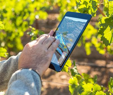 Applications mobiles : tablettes et smartphones écrivent le futur de la vigne et du vin