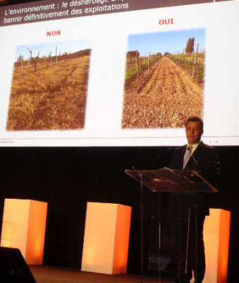 Cognac : Hennessy conseille les viticulteurs sur leurs pratiques techniques