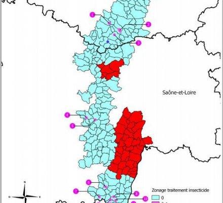 Bourgogne : le projet d'arrêté du dispositif de lutte contre la flavescence dorée 2015 soumis à la consultation du public