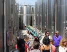 Bordeaux : les vignerons de Tutiac lancent leur plate-forme oenotouristique