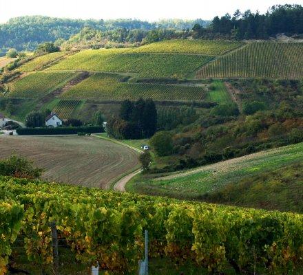 Candidatures Unesco Champagne et Bourgogne : lCOMOS rend ses avis