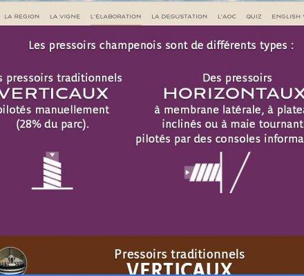 Champagne : un programme de formation en ligne pour conquérir les consommateurs