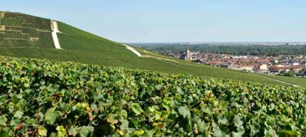 Les caves de Champagne et climats de Bourgogne rentrent au Patrimoine Mondial