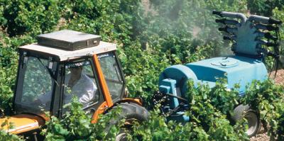 Arsénite de sodium : ouverture de la première enquête pour homicide involontaire d'un vigneron