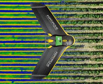 Viticulture de précision : des difficultés de déployer les drones au vignoble