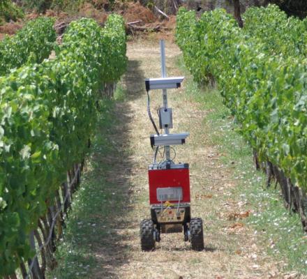 Viticulture de précision : premier essai réussi pour Vinbot