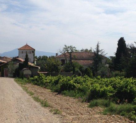 Châteauneuf du Pape:  Les frères Aubertétendent (encore) leurs vignobles avec le rachat du Château Husson