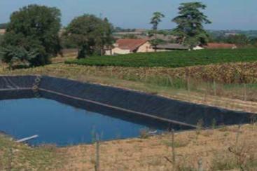 Cognac : l'eau de vie charentaise mobilisée pour les eaux de Charente