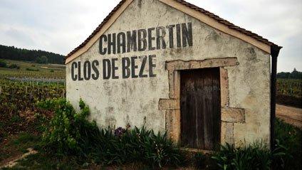 Bourgogne : première commercialisation du vin du néo-zélandais David Hall-Jones