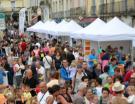 Comité, fêtes, musée et route du vin : les candidats au prix René Renou 2015