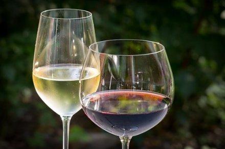 Bien boire : Wine in Moderation entre à l'OIV