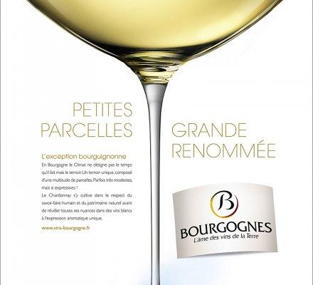 Les vins de Bourgogne en campagne
