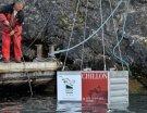 Vin sous-marin : l'expérience du lac Léman tombe à l'eau