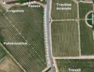 Viticulture Biologique : un rendez-vous technique en Languedoc-Roussillon