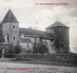 Patrimoine : la vente du château de Gevrey-Chambertin agite le vignoble bourguignon