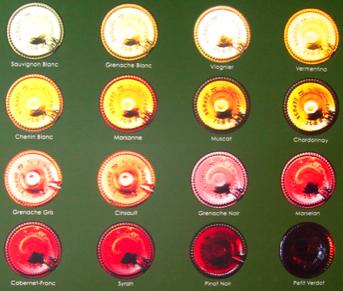 Languedoc : la production annonce des prix minimum pour la campagne 2012-2013