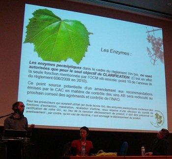 En direct de Vinitech : réponses aux principales questions pratiques des vinifications bio