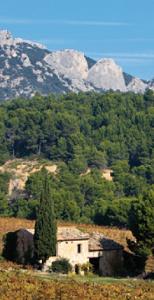 Vallée du Rhône : vers un repositionnement des vins des Côtes du Rhône
