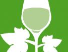 Alsace : de la complémentarité du règlement européen et de la charte régionale des vins bio
