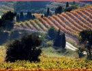 Inter Rhône présente ses nouveautés œnotouristiques du printemps/été 2013