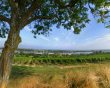 Ackerman takes over the Loire domains of the Reybier Dubois Champagnes group