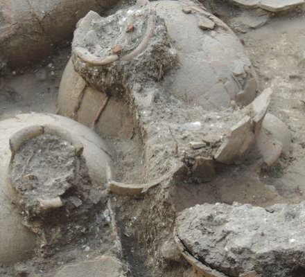 Middle East : the oldest wine cellar excavated