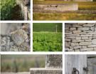 Climats de Bourgogne : le dossier déposé, l'inscription UNESCO en mire pour 2015