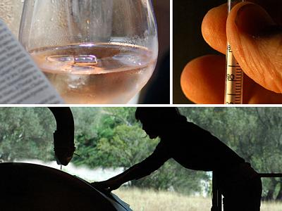 Vins rosés : le Volume Complémentaire Individuel à l'essai dès 2014