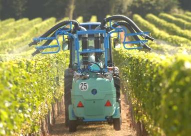 Vent supérieur à 19 km/h = pas de traitement phytosanitaire des vignes