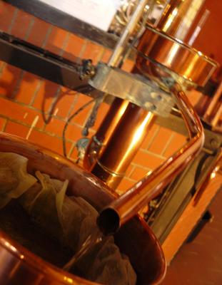 Cognac : le rendement maximum fixé à 11,70 hectolitres d'alcool pur par hectare